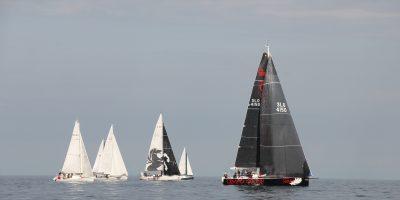 47. Šavrinska regata